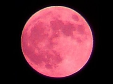 Strawberry Moon In The Sky Tonight