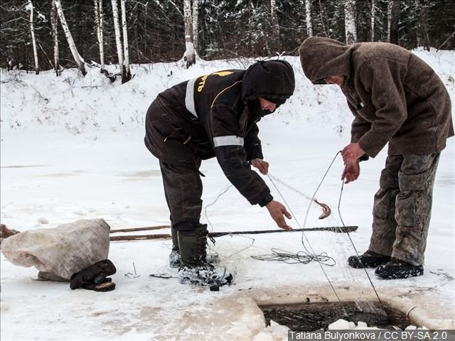 Fishing And Deer Hunting Licenses May Increase