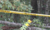 Investigation Of Discovered Body Continues In Brainerd