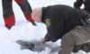 """Official """"OK"""" Given At Jaycees Fishing Extravaganza Ice Check"""